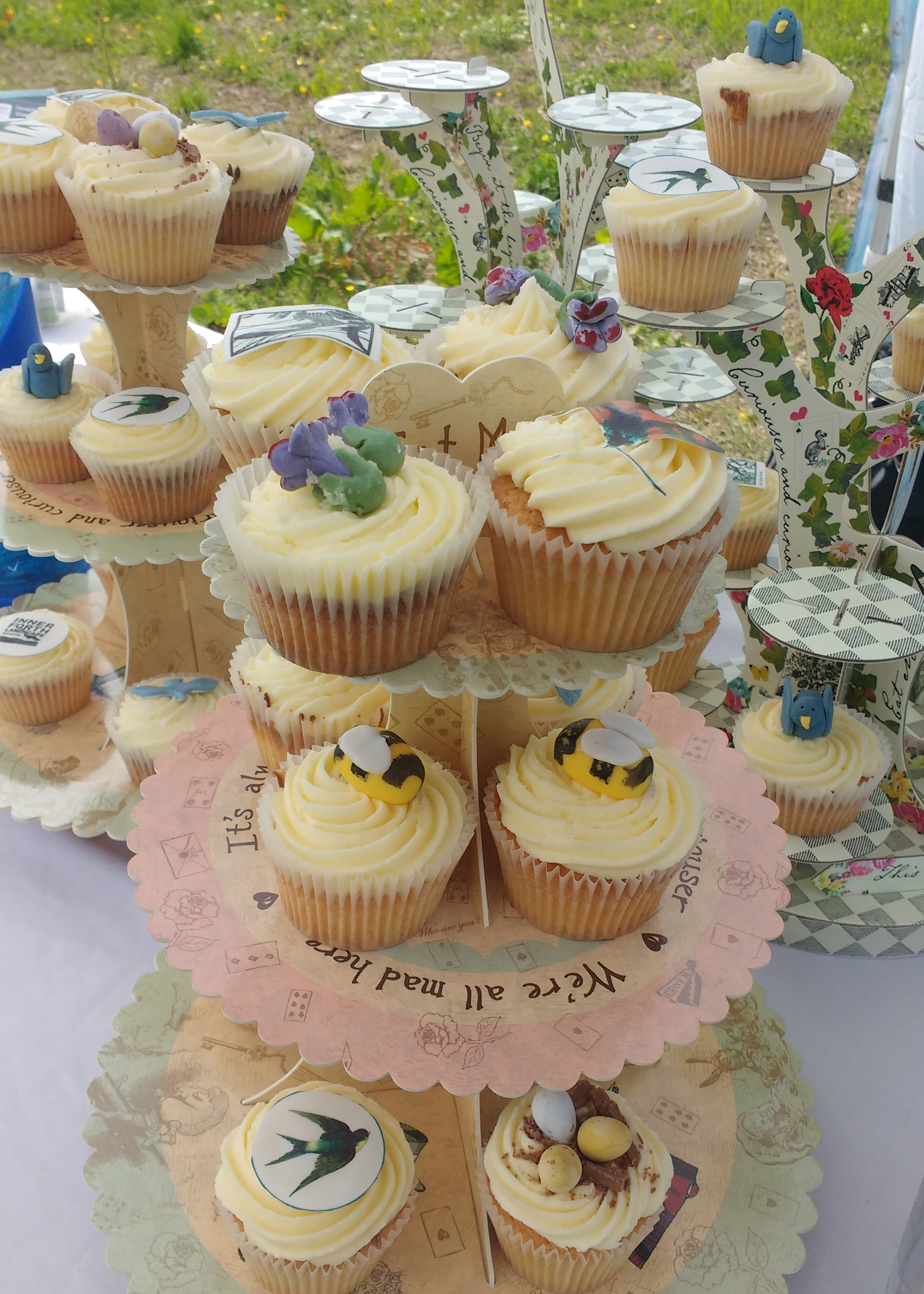 RSPB Black Devon Wetlands Fun Day 2018 cakes