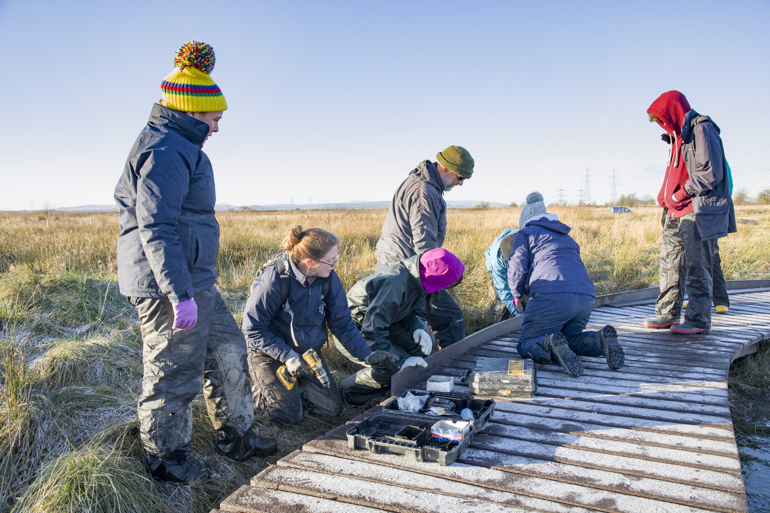 Volunteer work party edging the boardwalk at Black Devon Wetlands